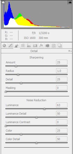 Photoshop (CS5) – Adobe Camera Raw – Noise Reduction – All Digital