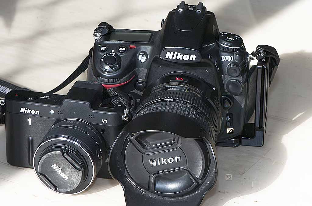 The Nikon 1 Versus a Full Frame Camera